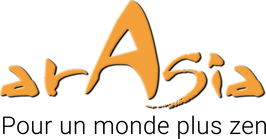 logo araisa salon du bien etre plaisance du touch